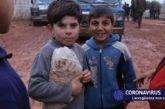 Siria. L'ONU lancia l'allarme: crisi alimentare senza precedenti. Ai.Bi in prima linea per la sussistenza e la resilienza delle famiglie