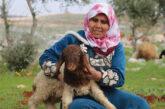 Siria. Le storie di ogni famiglia sono diverse: quelle delle donne siriane sono differenti da tutte le altre.