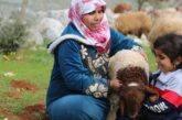 Siria. Aisha Ramadan e la forza delle donne siriane