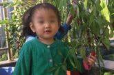 Cina. 8 bambini davvero speciali attendono il tuo aiuto…