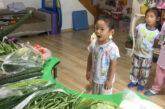 Cina. Indovina cos'è questo? I bimbi a lezione di…ortaggi!