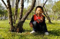 cina, l'emozione per i fiori della primavera a Xi'An, grazie al sostegno a distanza