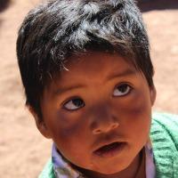bimbo boliviano 1 200