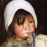bimbo peruviano