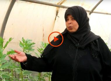 siria, il video-racconto di alcuni profughi beneficiati dal progetto di Ai.Bi.