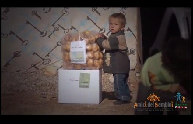 video distribuzione ceste siria b